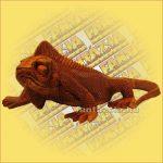 Iguana-Leguán Sono Fafaragvány kicsi