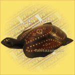 Teknős Trópusi Fából ( Lomboki) kicsi A