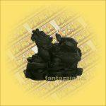 Halcsont Figura Sárkányteknős Feng Shui A