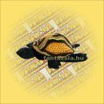 Homokállat - Teknőc