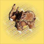 Homokállat - Elefánt