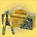 Gyöngyvirág Indiai Füstölő / Tulasi Lily of the Valley