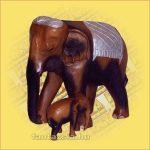 Elefánt Gyermekével