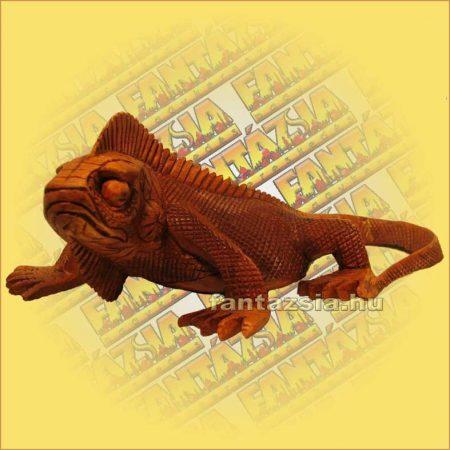 Iguana-Leguán Sono Fafaragvány közepes