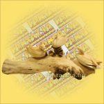Kacsák Hibiscus Fából Hibiscus Faágon