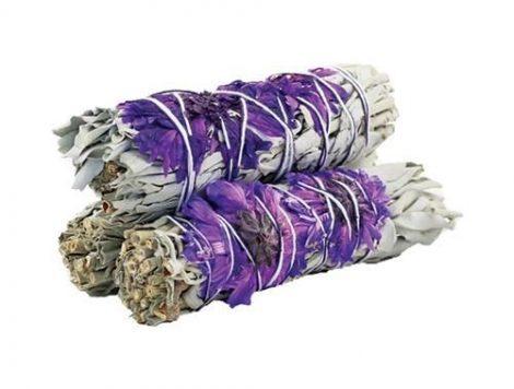Purple Daze Sage-Lila Kábulat Fehér Zsálya köteg
